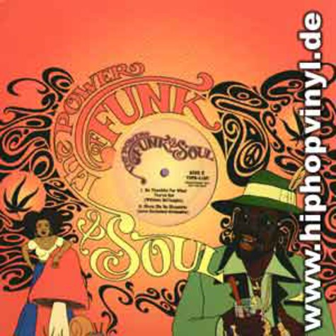 Power Of Funk & Soul, The - Volume 15