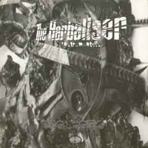 Herbaliser - The blend instrumentals