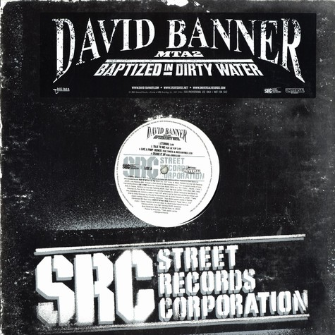David Banner - Baptized in dirty water
