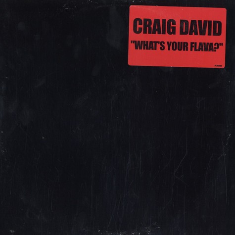 Craig David - What's your flava