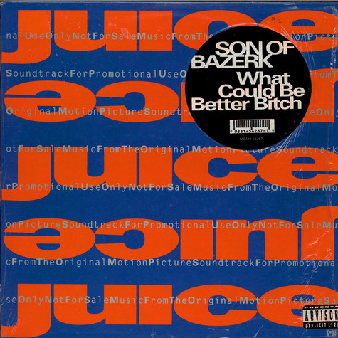 Son Of Bazerk - What Could Be Better Bitch
