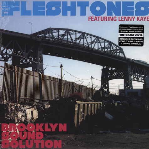 Fleshtones, The - Brooklyn Sound Solution