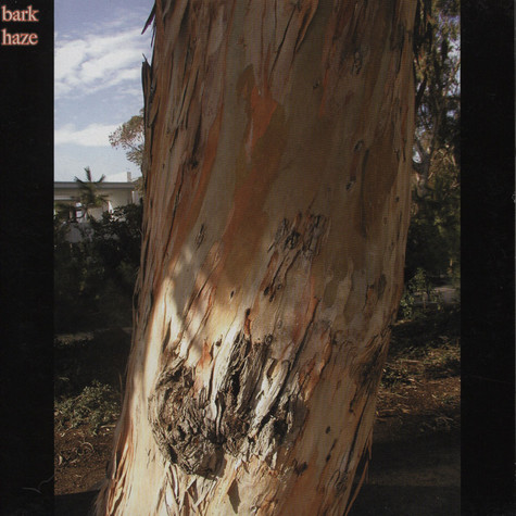Bark Haze / Our Love Will Destroy The World - Split