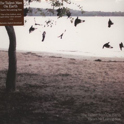 Tallest Man On Earth - There's No Leaving Now