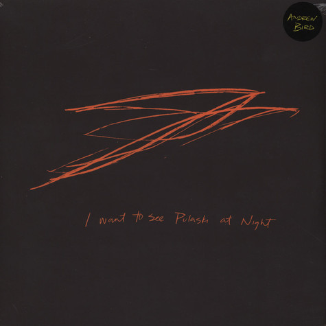 Andrew Bird - Want To See Pulaski At Night