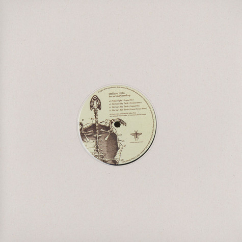 Stefano Testa - Hot Sea's Baby Turtle EP