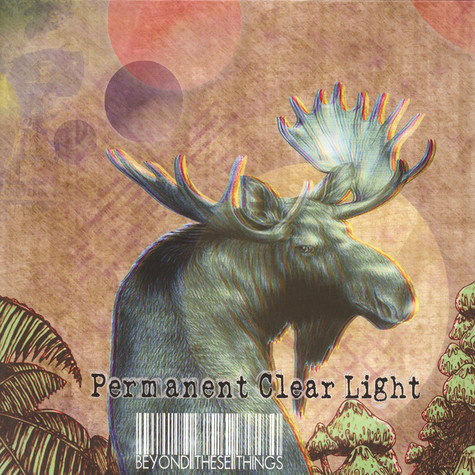 Permanent Clear Light - Beyond These Things
