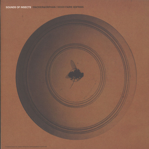 Racker & Orphan - Sounds Of Insects