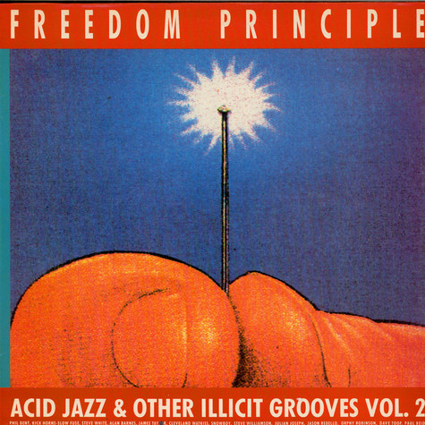 V.A. - Freedom Principle - Acid Jazz And Other Illicit Grooves Vol. 2
