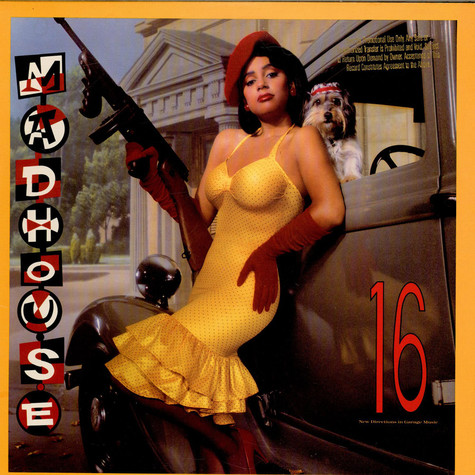 Madhouse - 16 (New Directions In Garage Music)
