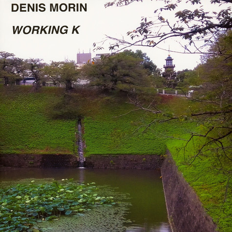 Denis Morin - Working K