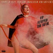 John Davis & The Monster Orchestra - Up Jumped The Devil