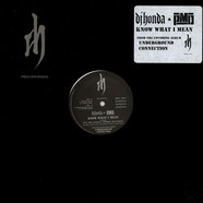 DJ Honda & PMD - Know What I Mean