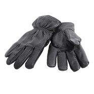 Dickies - Memphis Gloves