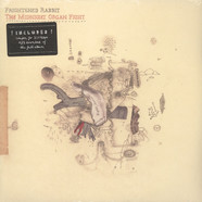 Frightened Rabbit - Midnight Organ Fight