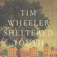 Tim Wheeler - Sheltered Youth EP