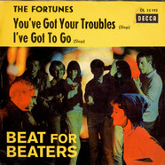 Fortunes, The - You've Got Your Troubles