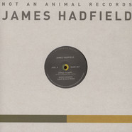 James Hadfield - Buried Answers