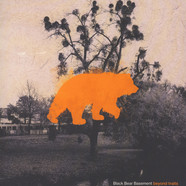 Black Bear Basement - Beyond Traits Orange Vinyl Edition
