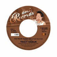 Tracy Hamlin - You're My Sunny Day