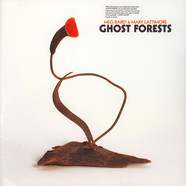 Meg Baird & Mary Lattimore - Ghost Forests