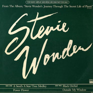 Stevie Wonder - A Seed's A Star