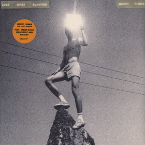 Mount Kimbie - Love What Survives Black Vinyl Edition